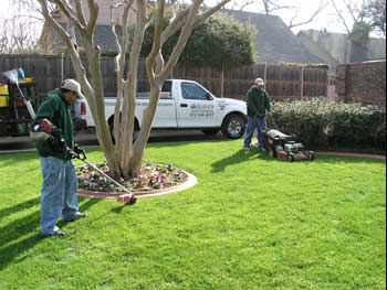 Calling all contractors we can reduce your lawn care for Garden maintenance tools