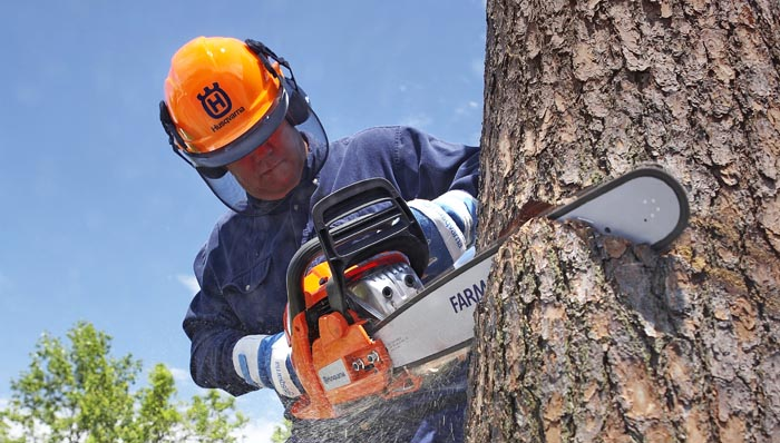 Chainsaw Maintenance Tips