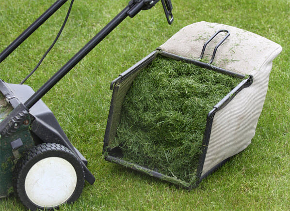 Clever Garden Recycling With Lawn Clippings Mvs Ottawa