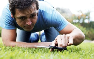 What is The Best Time of Day to Cut Your Lawn?