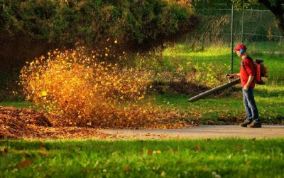 Leaf Blower Buying Guide for Summer Lawn Maintenance