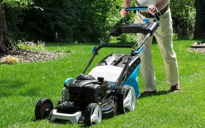 8 Tasks to Prepare Your Lawn for Spring